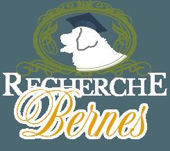 Recherche Bernes